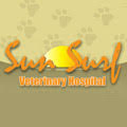 Sun Surf Veterinary  Social Media SunSurf